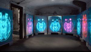 Matrix der Gefühle 2000, Leuchtkästen, Installationsaufbau