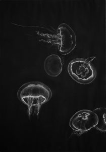 Quallen 9, 2009, Kreide, Acrylfarbe auf Papier, 42 x 60 cm - Wolfgang Stiller